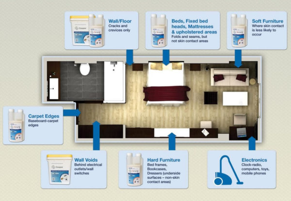 Bed Bug Treatment Areas
