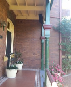 Bee Removal Front of House 2 small