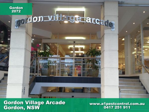 Gordon Village Arcade