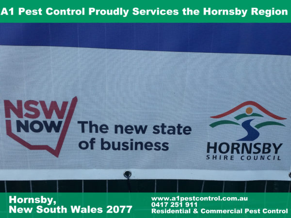 """Picture of the New South Wales, """"New State For Business Motif"""". Hornsby Shire Council Logo Accompanied"""