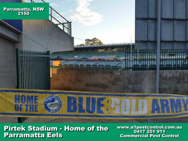 Parramatta Eels Pirtek Stadium (2)