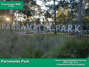 Parramatta Park 2