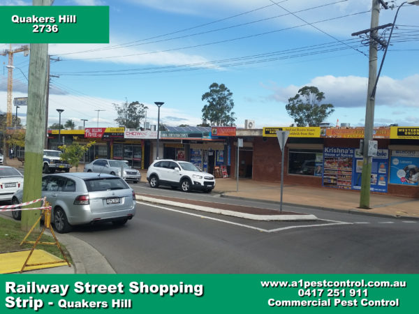 Picture of Railway Street Quakers Hill. Taken from nearby roundabout facing down the street.