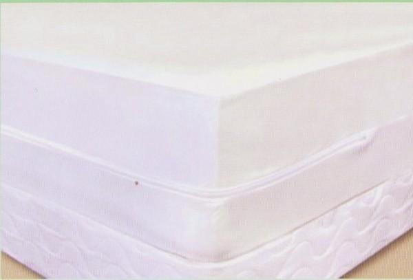 bed-bug-matress
