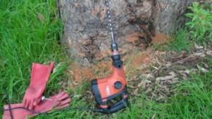 termite-drill-small