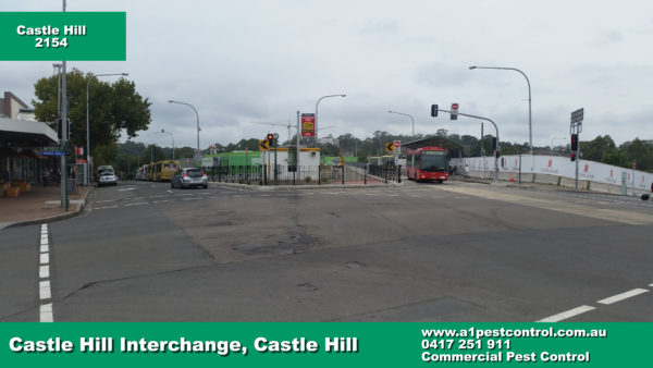 Castle Hill Bus Interchange, picture taken opposite Yogurberry