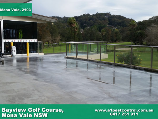 Picture taken of BayView Golf Course in the Northern Beaches.
