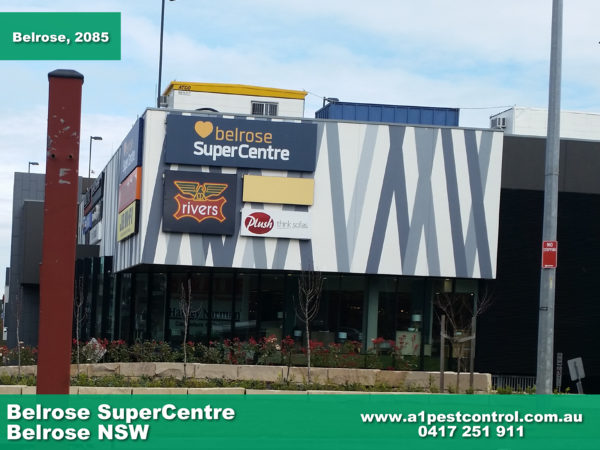 Belrose SuperCentre, a great place to do your weekly shop as it has a wide variety of shops that cover almost everything you could need!
