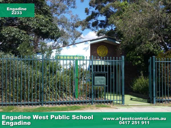 Engadine West Public School.