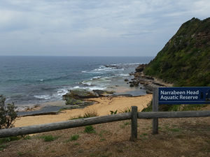 Narrabeen heads