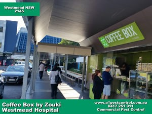 Westmead Hospital Coffee BoxSmall