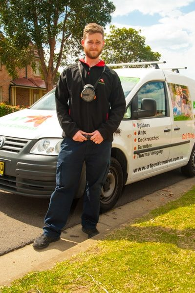 A1 Pest Control Hills District Termite Inspection Treatment