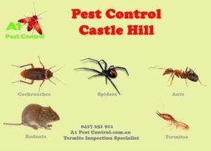A1 Pest Identification Card Castle Hill
